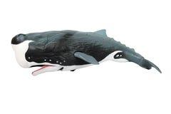 凶手塑料鲸鱼 图库摄影