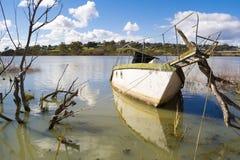 凹下去的帆船在墨累河,默里桥梁,南Austra 库存照片