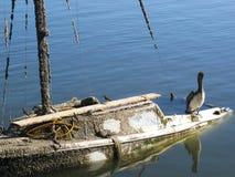 凹下去的船 免版税库存照片