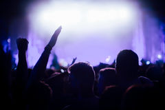 出席音乐会的党人 库存图片