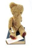 出生证和玩具熊 库存图片