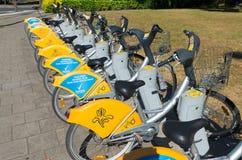 出租自行车在布鲁塞尔 库存照片