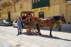 出租车司机给一次游览圣保罗` s正方形的游人, 免版税图库摄影