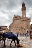 出租马车的马有从游人的一个断裂在Palazzo Vecchio旁边在佛罗伦萨,意大利 免版税库存图片