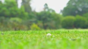 击中在发球区域的慢动作高尔夫球运动员高尔夫球  影视素材