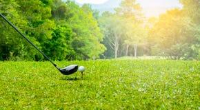 击中在发球区域的高尔夫球运动员高尔夫球区域在高尔夫球场 免版税库存照片