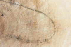 击倒的树干 杨柳,关闭 粗砺木背景的木头 库存图片