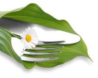 刀子和叉子在绿色叶子 免版税库存图片
