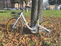 分享在公共场所的被放弃的自行车 窃取有些片断 免版税库存图片