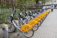 分享在布鲁塞尔的Villo自行车 免版税库存照片