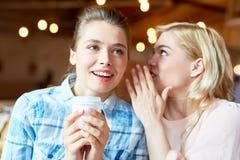 分享秘密与最好的朋友 库存图片