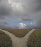 分叉的路径照片股票 免版税库存照片