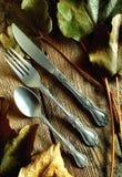分叉knive和匙子 免版税库存照片