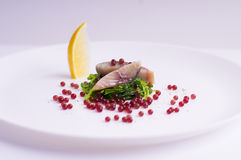 分子甜菜鱼子酱、鲭鱼鱼和海草 库存照片