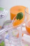 分子芒果红萝卜鱼子酱烹调 免版税库存照片