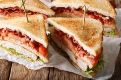 分层堆积三明治用火鸡肉、烟肉、蕃茄和lettuc 免版税库存图片