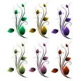 分支与不同的颜色叶子在白色背景, ve的 图库摄影