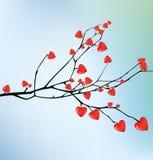 分支与红色心脏 我爱你 图库摄影
