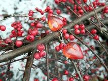 分支与红色莓果andred心脏,华伦泰` s天 免版税库存照片