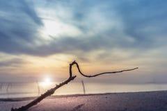 分支和日出在Samila在宋卡靠岸 免版税库存图片