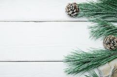 分支圣诞树和锥体与雪在白色木葡萄酒背景 库存图片
