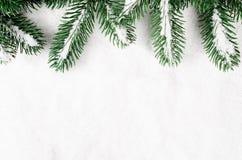 分支圣诞节包括的雪结构树 库存照片