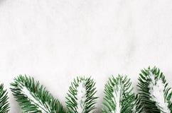 分支圣诞节包括的雪结构树 免版税库存图片