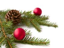 分支圣诞节 免版税图库摄影