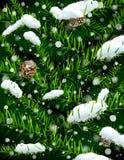 分支圣诞节pinecones雪结构树 免版税库存照片