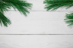 分支在白色木葡萄酒背景的圣诞树 库存照片