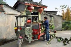分支瓷装载人pengzhou结构树 库存照片
