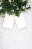 分支的两张空的照片在雪被吃了 免版税库存照片