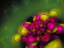 分数维抽象样式,美丽的图表创造性的卷毛花五颜六色的精美广告 库存照片