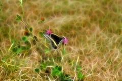 分数维背景纹理 与黄线的黑蝴蝶坐 库存照片