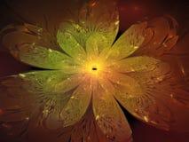 分数维花摘要作用,设计横幅回报装饰未来艺术性五颜六色,背景,动态 免版税库存照片