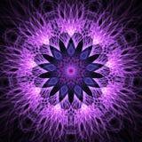 分数维雪花或花在蓝色,紫罗兰色和淡紫色颜色 库存例证