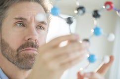 分析分子结构的科学家 免版税库存图片