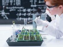 分析在化学实验室的学生 免版税库存图片