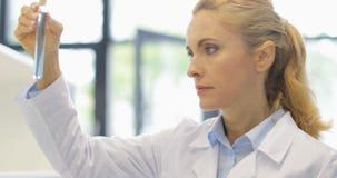 分析在试管实验的研究结果的女性科学家液体在有小组的现代实验室研究员 股票视频