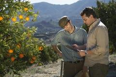 分析清单的农夫和监督员在农场 库存照片