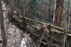 分离森林区域的老篱芭从足迹 库存照片