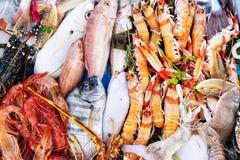 分类了在市场上的新鲜的未加工的海洋海水鱼海鲜 海顽童,淡菜,牡蛎,乌贼,虾,龙虾,螃蟹 免版税库存照片