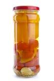 分类玻璃瓶子用卤汁泡的蔬菜 免版税库存图片