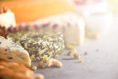 分类艰苦,不很软和软干酪用橄榄, grissini面包条,雀跃,葡萄,在灰色混凝土 免版税库存图片