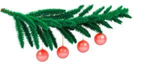 分行圣诞树 库存图片