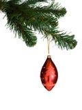 分行圣诞树 免版税库存图片