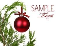 分行圣诞节常青树一ornamen结构树 免版税图库摄影