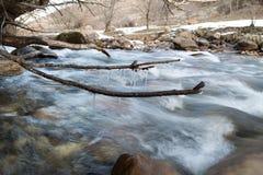 分行在流结构树冬天附近的冻结的冰柱山本质 冬天本质 库存照片
