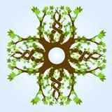 分行槭树模式 免版税库存图片