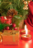 分行看板卡香槟圣诞节毛皮结构树 免版税图库摄影